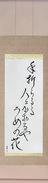 Japanese Hanging Scroll - Chiyojo - To the person breaking off the branch, giving its fragrance, the plum blossom (taoraruru hito ni kaoru ya ume no hana)  (VD6A)