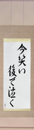 Japanese Hanging Scroll - Laugh Now, Cry Later (ima warai ato de naku)  (VD6A)