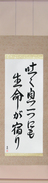 Japanese Hanging Scroll - Life in Every Breath (hakuiki hitotsu ni mo seimei ga yadori)  (VD5A)